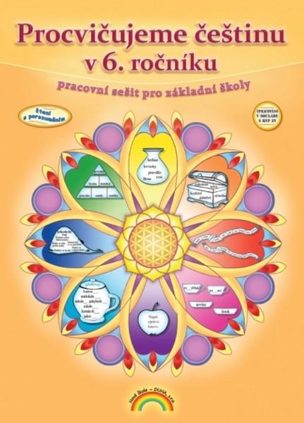 Procvičujeme češtinu v 6.r. - pracovní sešit (Čtení s porozuměním)